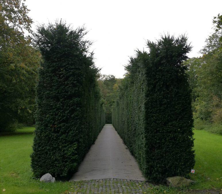 Besuch beim Niederländischen Dachau-Komitee